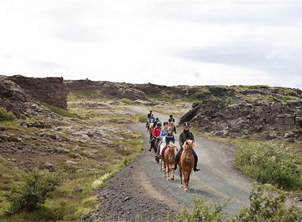 horse riding reykjavik5