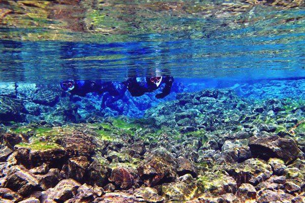 snorkelling silfra3s