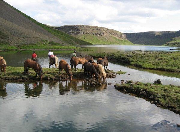 horseback-riding-1-