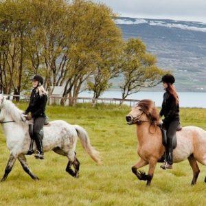 horseback-riding-1-1