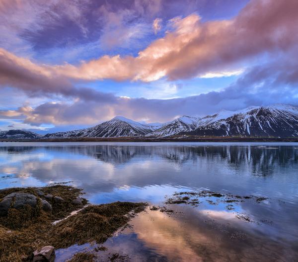 Borgafjörður