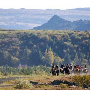horse riding reykjavik2