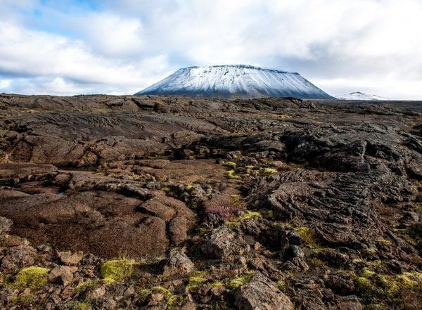 Icelandic Lava, moss and flora in the fall.