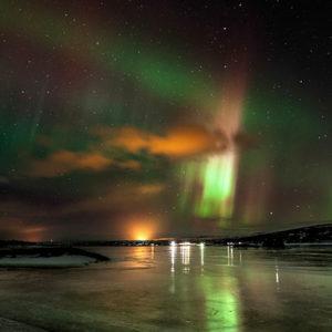 auroras-ladd